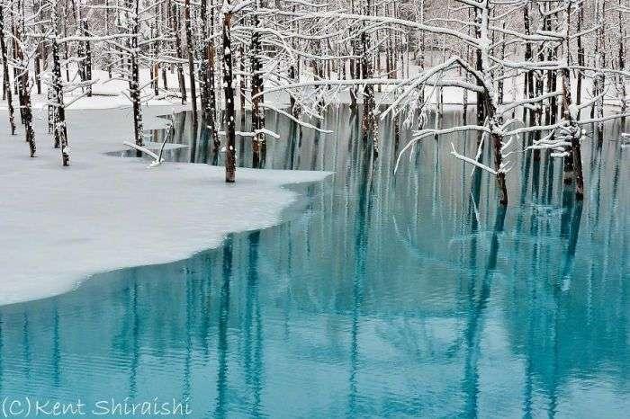 Блакитний ставок міста Бией на фотографіях Кента Шираїши (14 фото)
