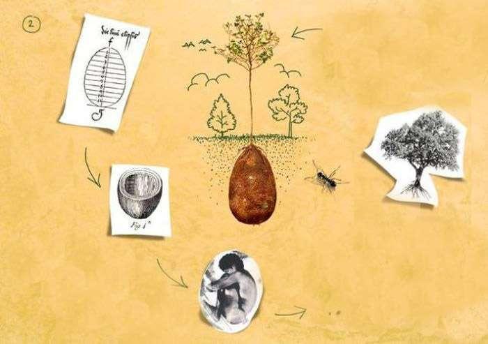 Нова концептуальна технологія поховання померлих людей (11 фото)