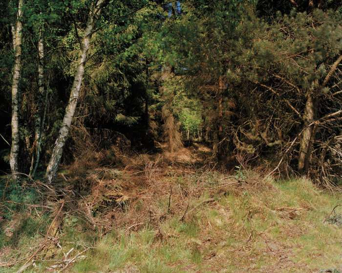 Невидимі снайпери на фото Симона Меннера (8 фото)