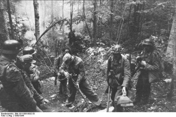 Безславні виродки часів Великої Вітчизняної війни (17 фото)