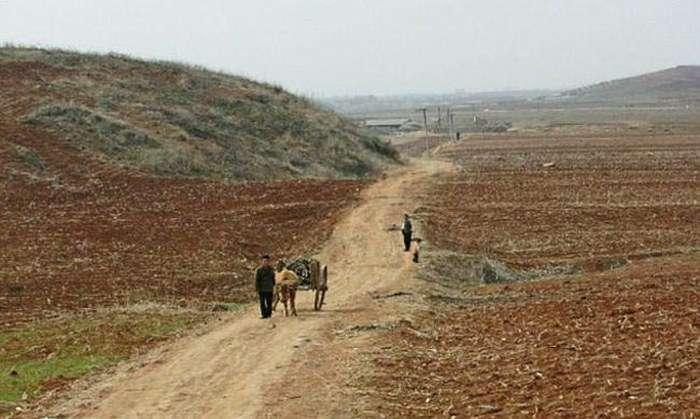 Контраст Північної і Південної Кореї на фото (22 фото)