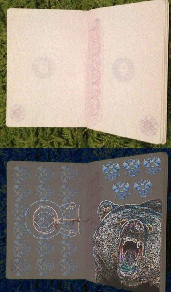 Як буде виглядати російський паспорт у світлі ультрафіолету (7 фото)