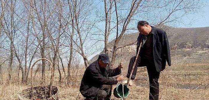 Дует китайських інвалідів посадив понад 10 000 дерев (7 фото)