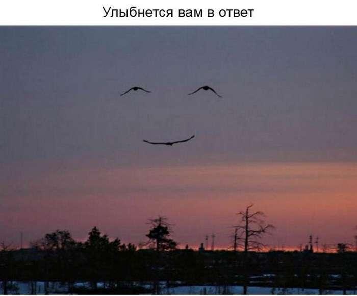 Про цінності посмішки в нашому житті (23 фото)