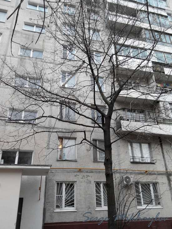 Котопровод в одній з квартир типової багатоповерхівки (3 фото)