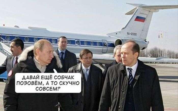 Реакція користувачів мережі на причину тимчасового відїзду Ксенії Собчак з країни (12 фото)