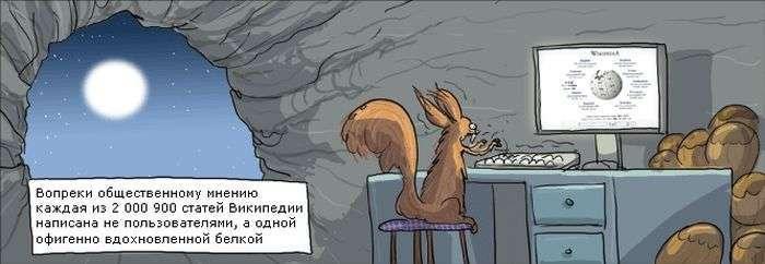 Рособрнадзор назвав заборону «Вікіпедії» жартом (11 фото)