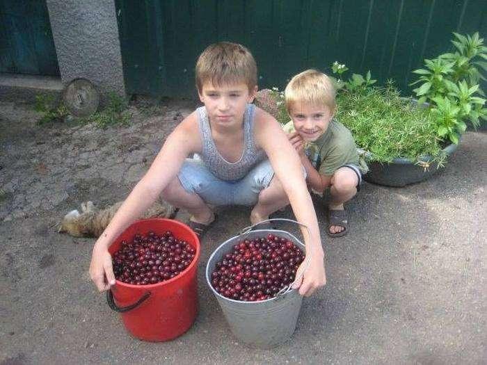 Користувачі Рунету підтримують дітей Донбасу (5 фото)
